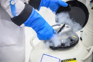 Cell Cryopreservation Services