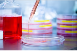 Cell Function Testing Services