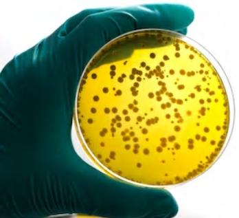 Bacteriostasis and Fungistasis Testing