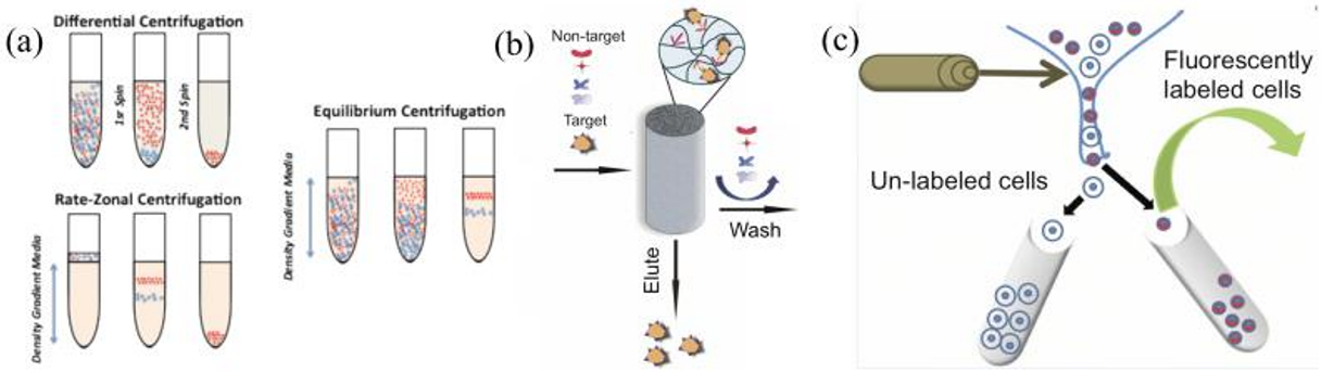 Traditional modes of cell separation currently used in the laboratory and clinic.